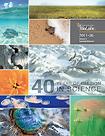 2015-2016 Catalog & Technical Reference