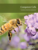 Competent Cells Brochure