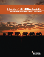 NEBuilder® HiFi DNA Assembly Bifold