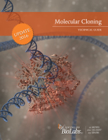 Molecular Cloning Technical Guide